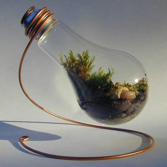 Флорариум в лампочке