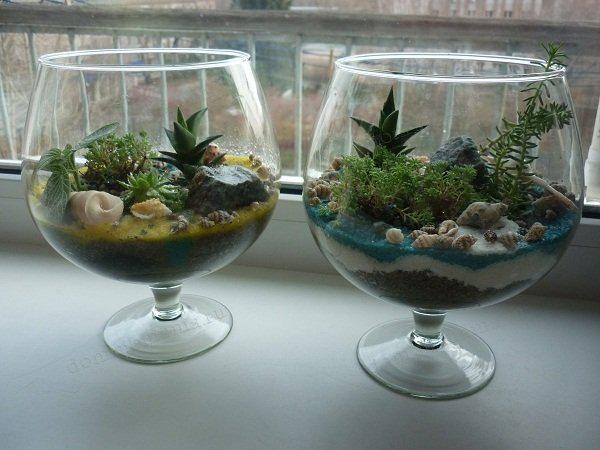 сосуды и емкости для мини-флорариумов