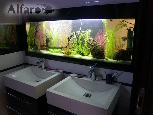 Террариумы в ванную комнату душевые кабины поддоны для душа